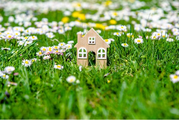 Sostenibilidad: consumir energía renovable en tu hogar